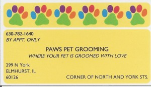 Paws_Pet_Grooming