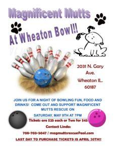 Wheaton Bowl @ Wheaton Bowl | Wheaton | Illinois | United States