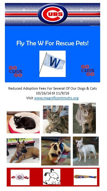 fly_the_w_for_rescue_pets